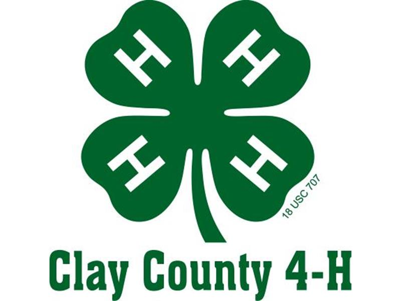 Logo for 2018 Clay County 4-H