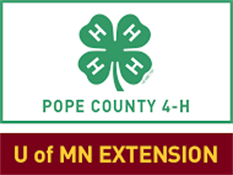 Logo for 2018 Pope County Fair