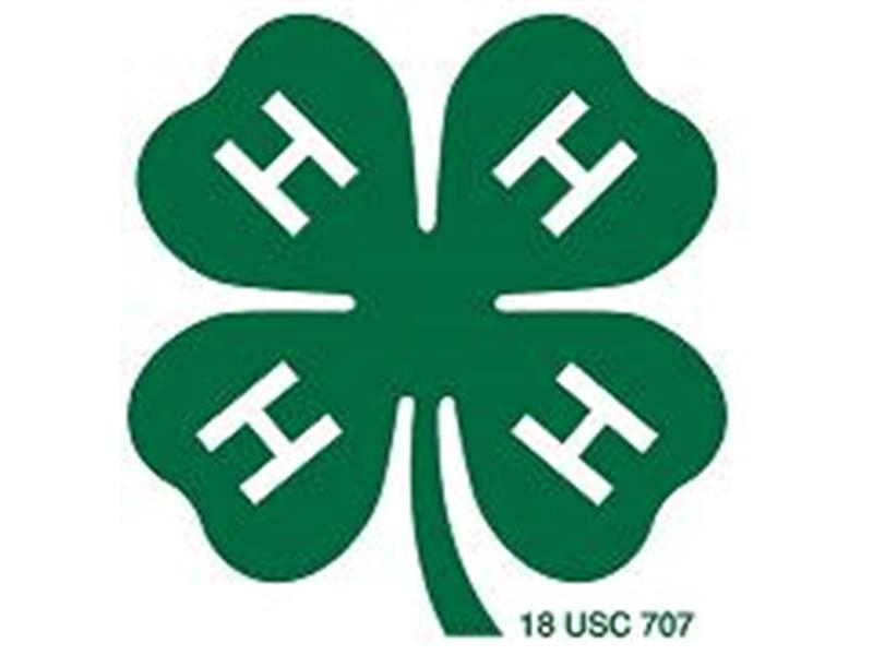 Logo for 2018 Sully County 4-H Achievement Days & Fair