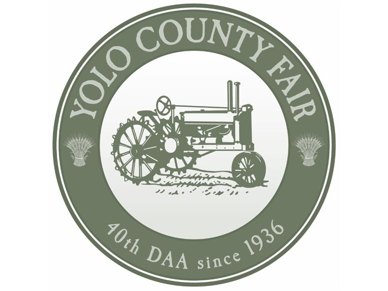 Logo for 2018 YCF Auction