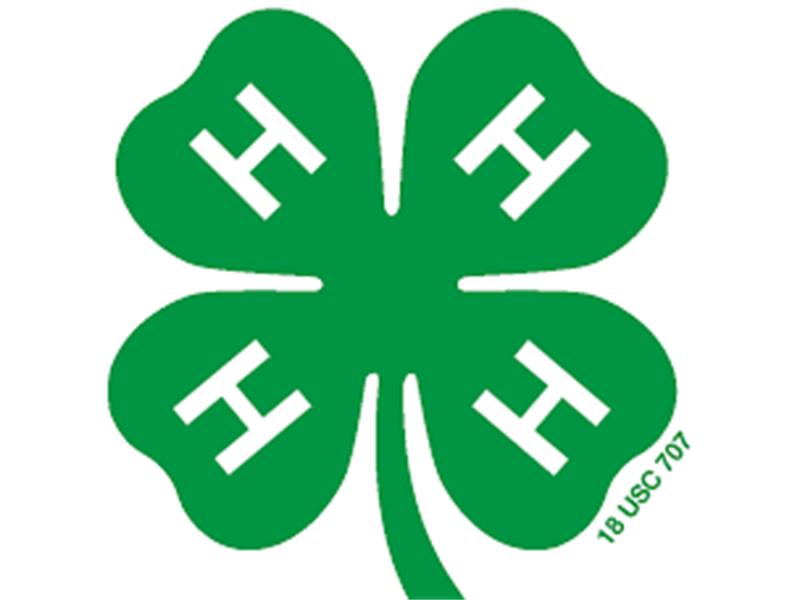 Logo for 2018 Elk County 4-H Horse Show