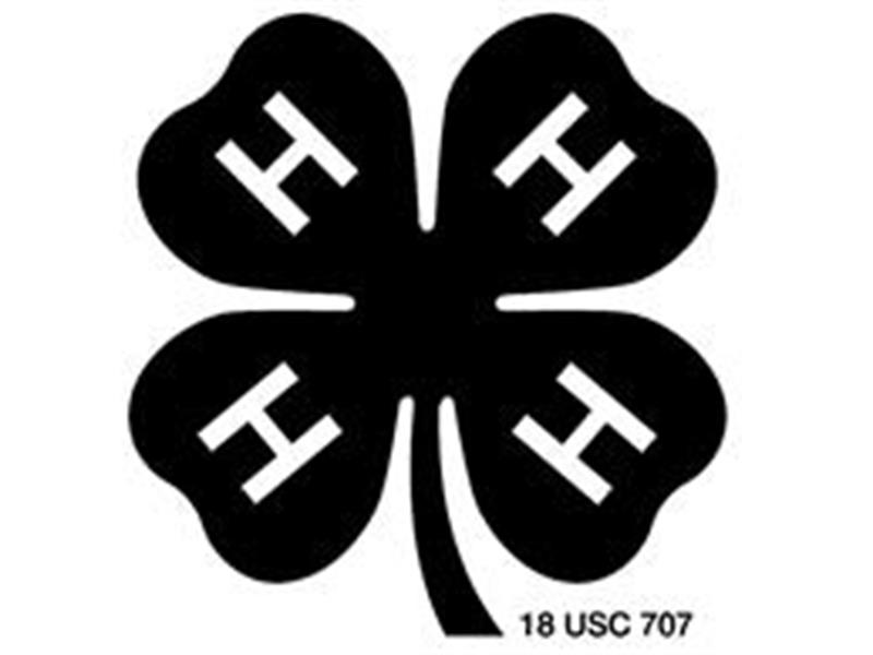 Logo for 2018 Lackawanna/Wyoming County 4-H Horse Show