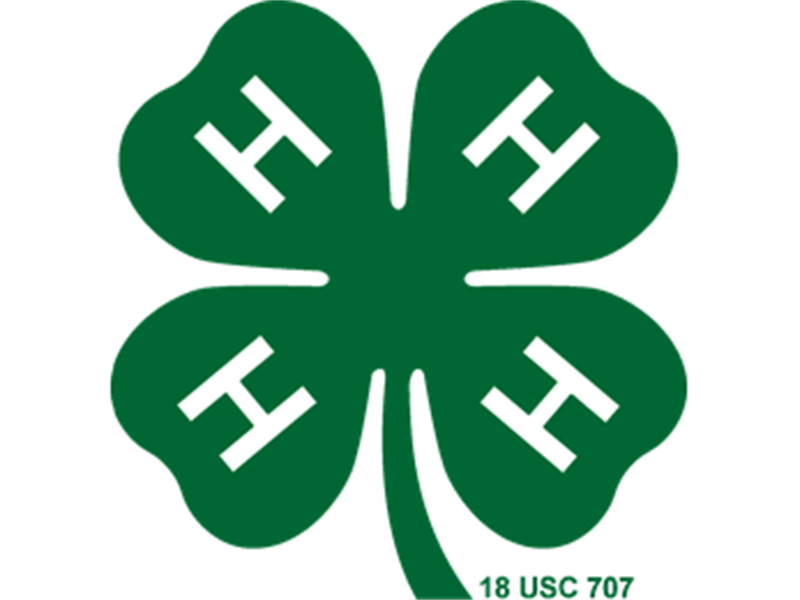 Logo for 2018 Luzerne County 4-H Horse Show