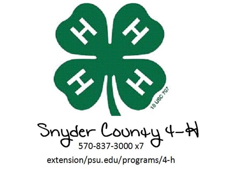Logo for 2018 Snyder County Horse Show
