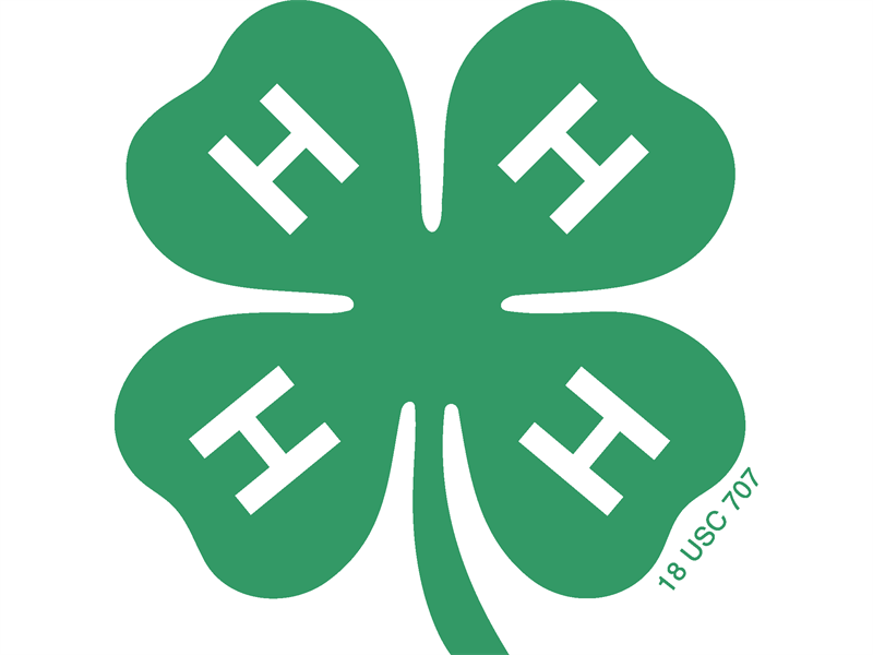 Logo for 2018 York County 4-H Horse Show