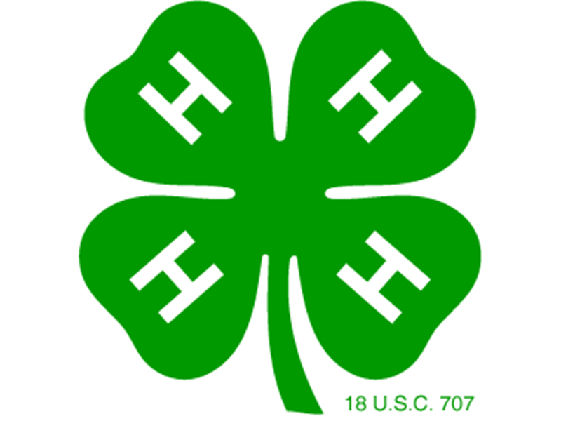 Logo for 2018 Franklin County 4-H Dairy Roundup
