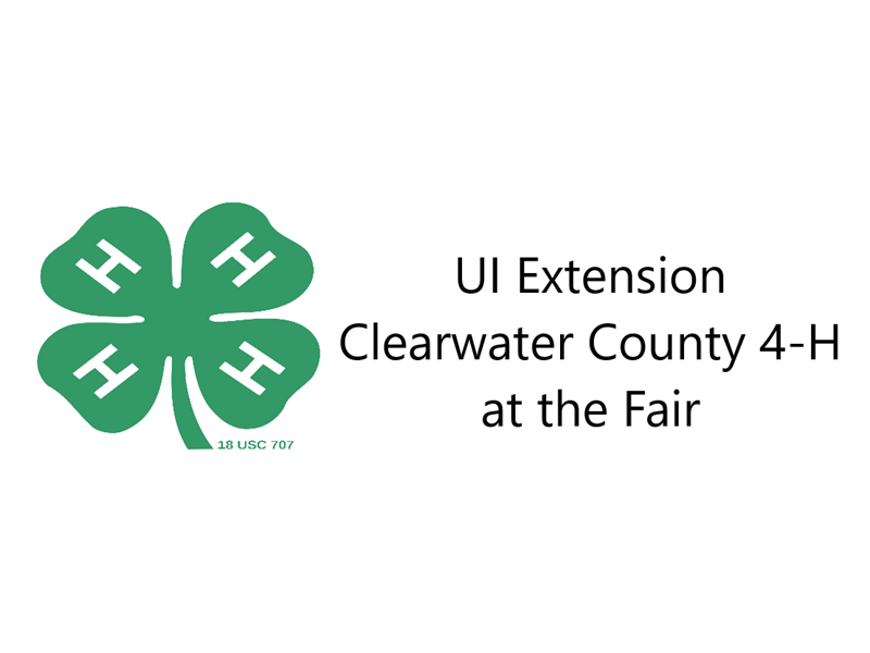 Logo for 2019 Clearwater County Fair