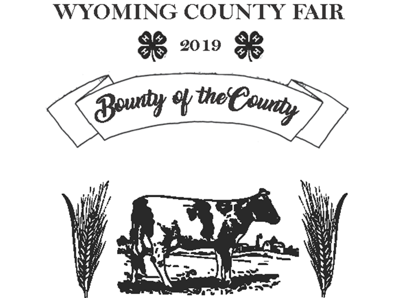 Logo for 2019 Wyoming County Fair