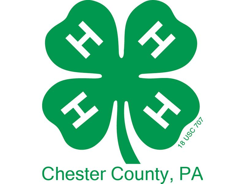 Logo for 2019 Chester County 4-H Horse Show