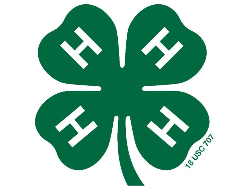 Logo for 2020 Madison County 4-H Fair